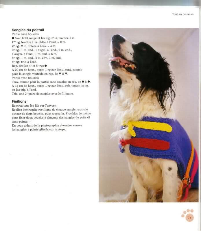 modelo de ropa para perros 5xl4zk