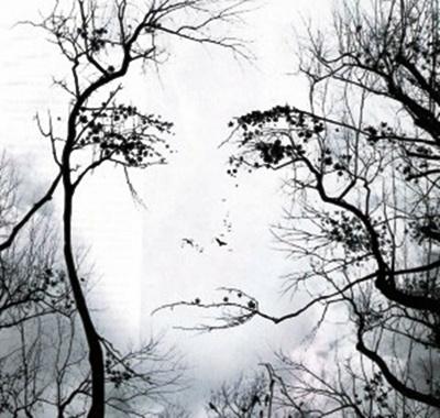 Caras de mujer hechas con flores Ip59wy