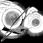 Senjutsus - Sapos 24eyloz