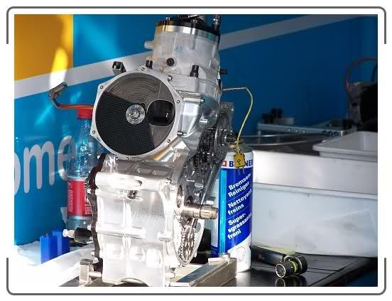 Motores especiales e injertos 24parmx