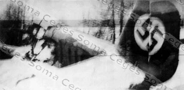 Ju 52 D-ALUS crash à Roubion (06) Fev 1939 3346jdd