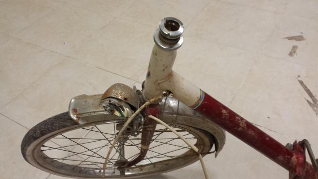 Restauración total de una bicicleta G.A.C. 5m0qs5