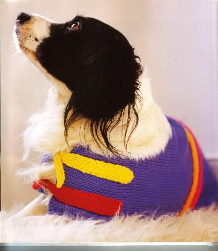 modelo de ropa para perros V7fmv9