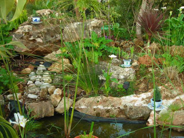 Nuestro jardín de Sa Possessió - Página 23 122gbd0