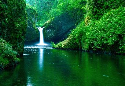 Favored Falls