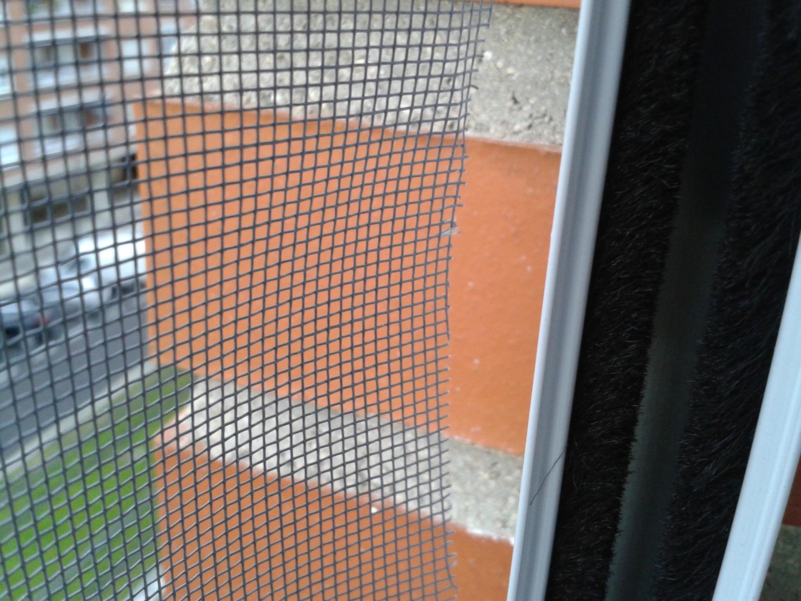 redes - Mosquiteras y redes para las ventanas y cómo proteger a nuestros gatos - Página 9 2rfpuvc
