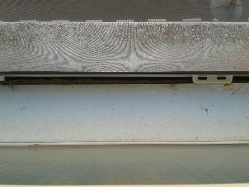 redes - Mosquiteras y redes para las ventanas y cómo proteger a nuestros gatos - Página 9 35bchdy