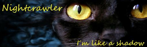 Wat zouden jouw kattennamen in het nederlands zijn? - Pagina 6 35hpzma