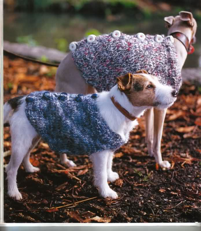 modelo de ropa para perros 35j9ufq