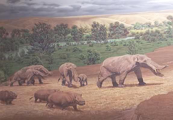 Elefantes Prehistóricos 6jiu6d