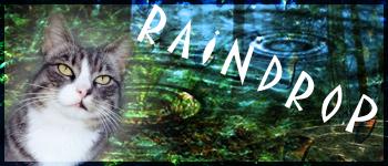 Een belangrijk gesprek met Brokenstar en Raindrop 104l1zd