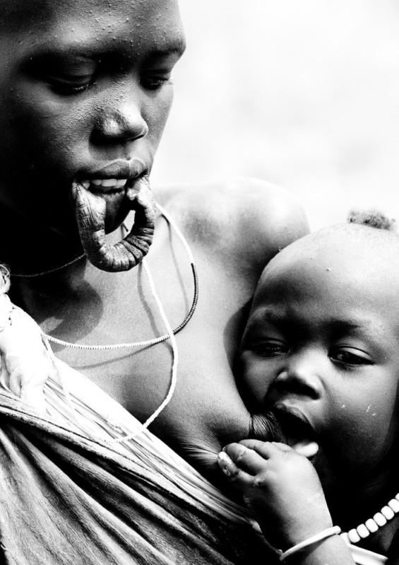 .. un viaje a la sabana africana ... 2db4b2s