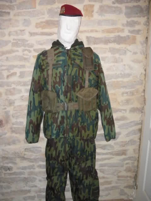Les tenues et équipements de l'Armée Française - Page 2 2ni1vt5