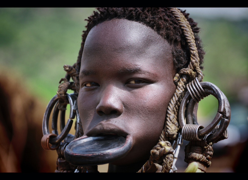 .. un viaje a la sabana africana ... 30c0odv