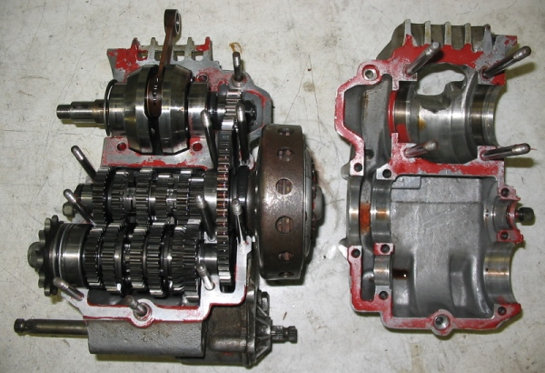 Amoticos de 50 cc GP Qygxn7
