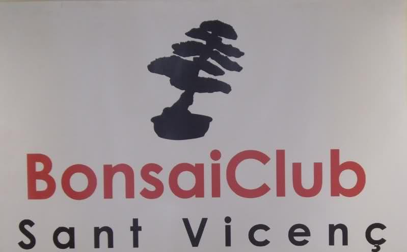 Exposicion de invierno Club Bonsai Sant Vicenç Scrs49