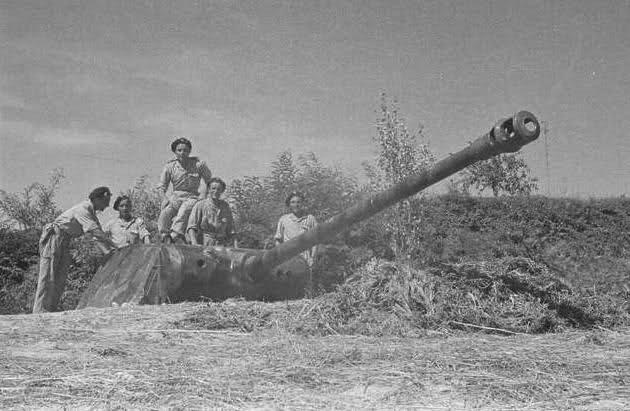 Panzerstellung Panther 28722vq