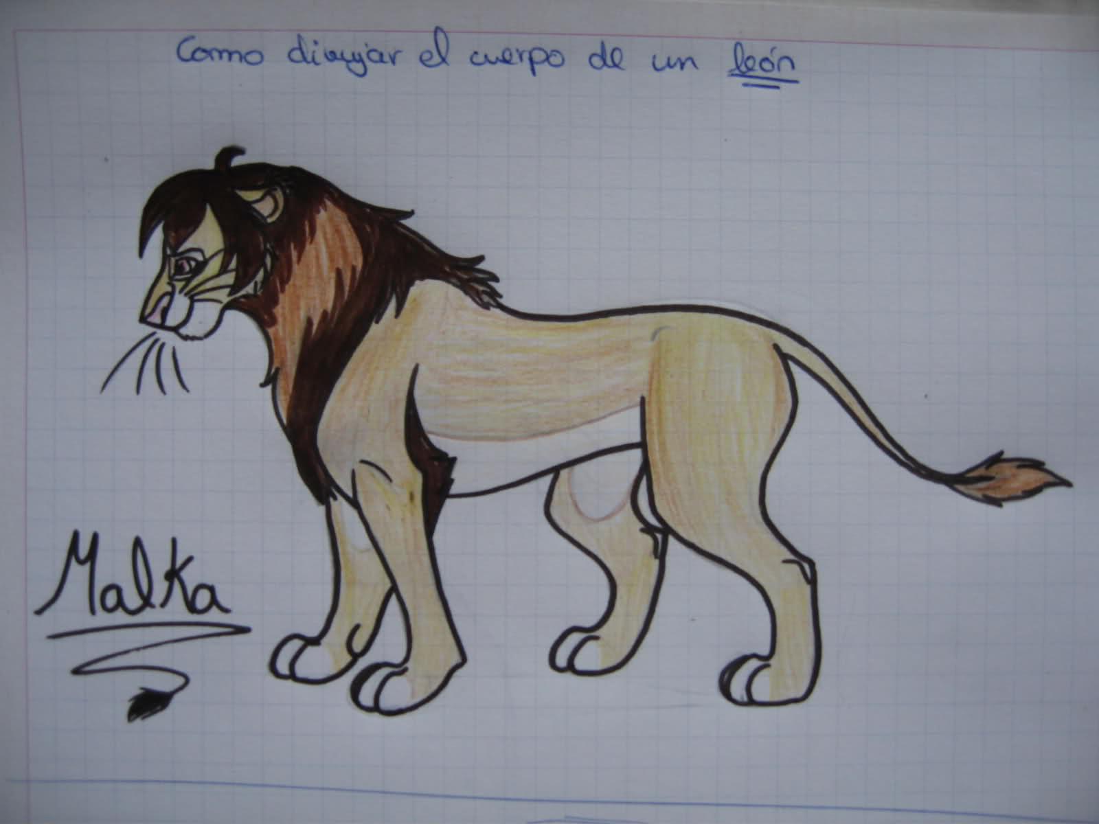 (Tutorial) dibujar un leon en 5 pasos Ei57vp