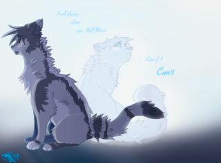 Dawn of New Paws - Portal 16iclsn