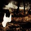 MISERY DISORDER || Inspiré de la série Dark Angel  2ep0kck