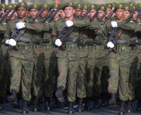 Fuerzas Armadas Revolucionarias de Cuba.  34ys1o9