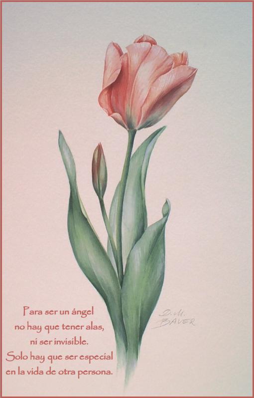 ¡¡¡¡Un tulipan para ti cada dia!!! Mumq