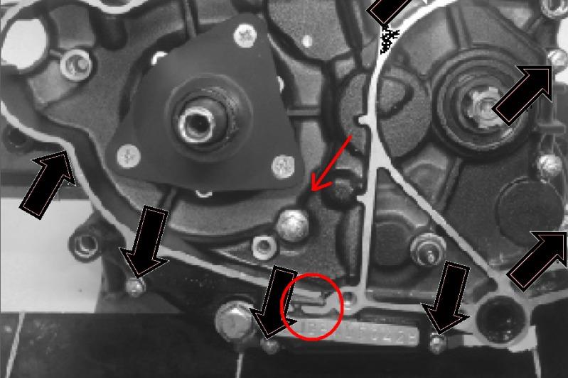[Resuelto]Perdida de Aceite cerca del Piñon, alguno encontro la solucion? V644sx