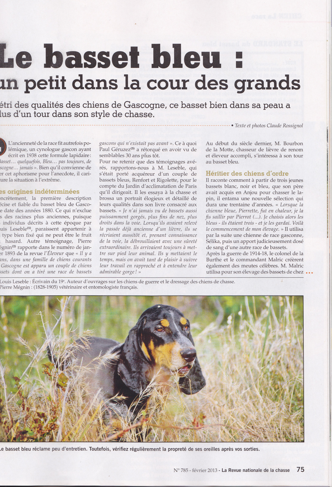Article de Presse 214796b