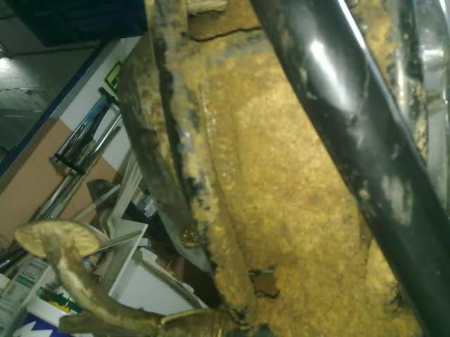 Diario restauración Puch Minicross El438i