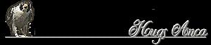 Robyn Hills Falcons 2013 tot en met 2019 20qb860