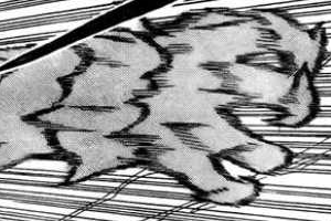 [Kekkei Genkai] Senninka - Transformação Eremita 2ltgfg3
