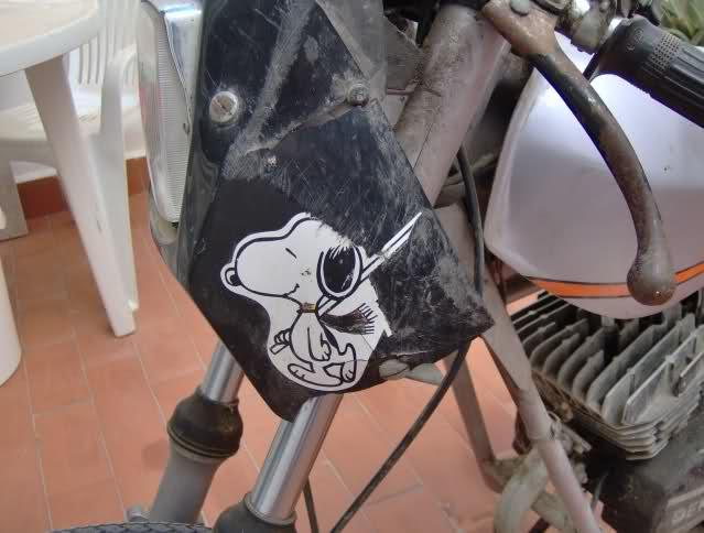 Restauración Sport Coppa 50 33zfkaf