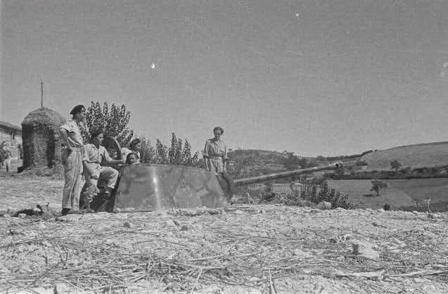 Panzerstellung Panther 2cxycns