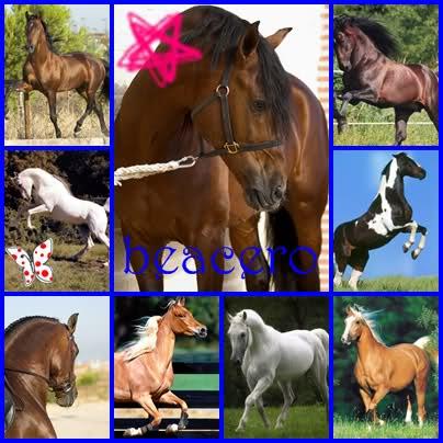 Tuto de ojos (de caballo) 2h7lzq1