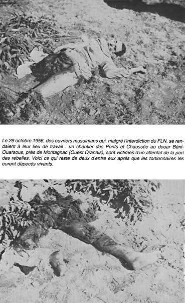 19 MARS 1962 : LE CESSEZ-LE-FEU… ou la victoire du FLN 2nrebgg