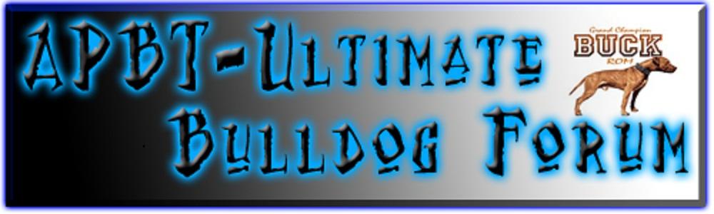APBT - The Ultimate Bulldog