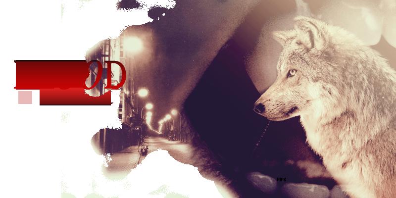 Blood In Darkness