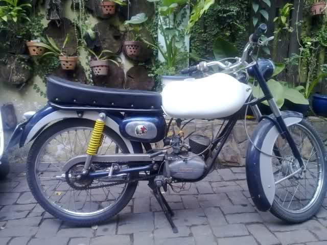 Mis Ducati 48 Sport - Página 3 242aq2v