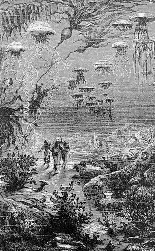 Informe 2011-B1947 - Jules Verne 2h81phf