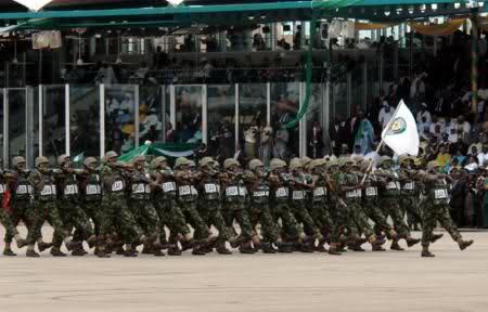 Armée Nigériane / Nigerian Armed Forces O7na1l