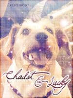 Chadot