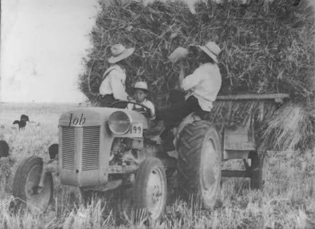 Tractores en fotos de época.  2dh64yd