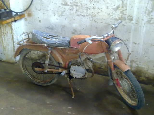 Esta es mi Dingo 49 2ds4l61