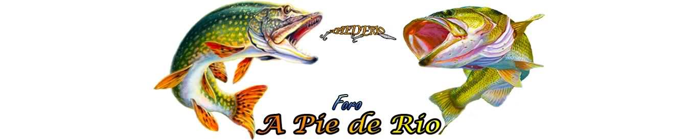 A Pie de Rio
