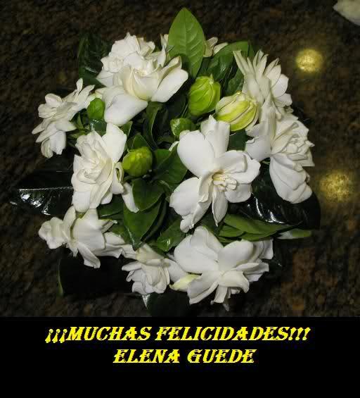 FELIZ CUMPLEAÑOS ELENA GUEDE!!!! V8exx5