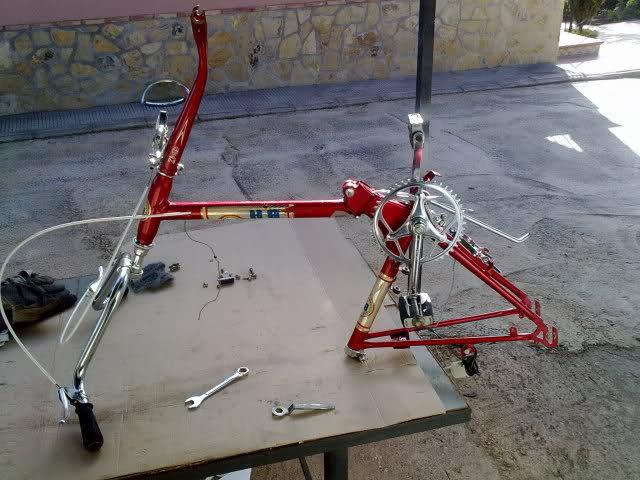 Bicicleta BH paseo. 29enkes