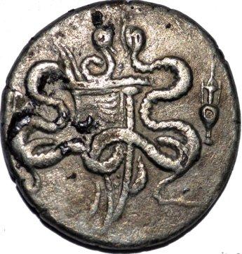Cistóforo tetradracma de Efeso, Ionia (189-133 a.C.) 10n84s1