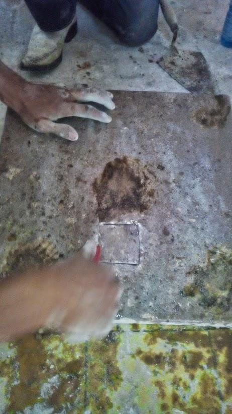 Pequeño tesoro encontrado en Guanajuato 161dwts