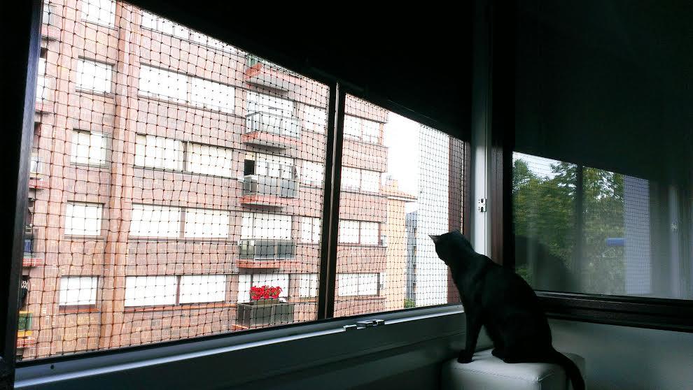 redes - Mosquiteras y redes para las ventanas y cómo proteger a nuestros gatos - Página 9 1el6qd