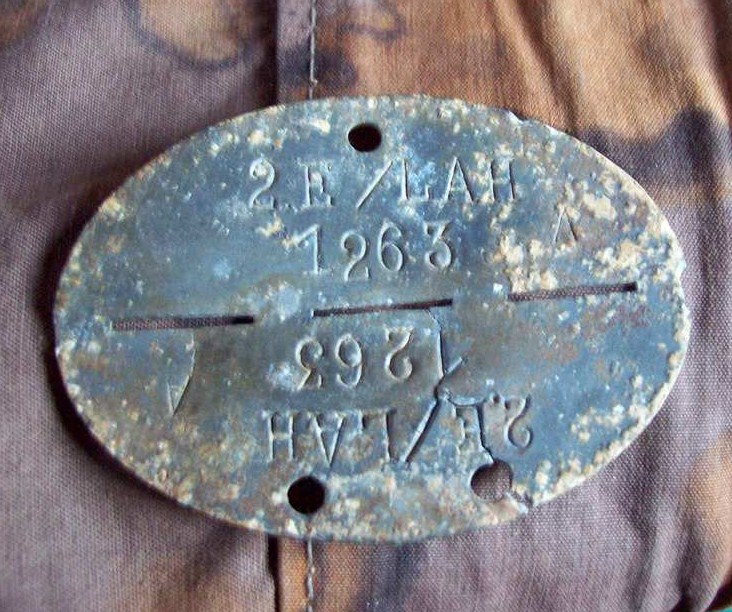 plaques matricules de la Waffen ss  294pcnr